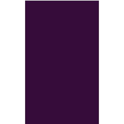 logo Premier League